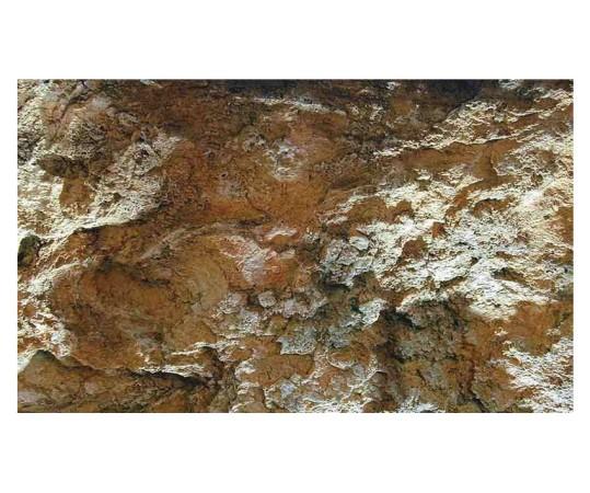 Édesvízi sziklás 100×50 cm akvárium háttér