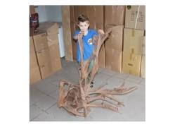 Mangrove fa XXXL-es /130-150 cm/