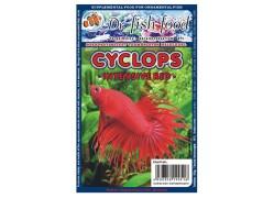 Dr. Fishfood Fagyasztott Cyclops Intenzív vörös /vitaminozott/ 500g