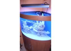 190 literes íves tengeri akvárium (kompletten)