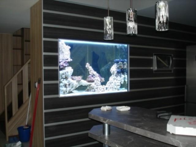 460 literes tengeri lágykorallos akvárium