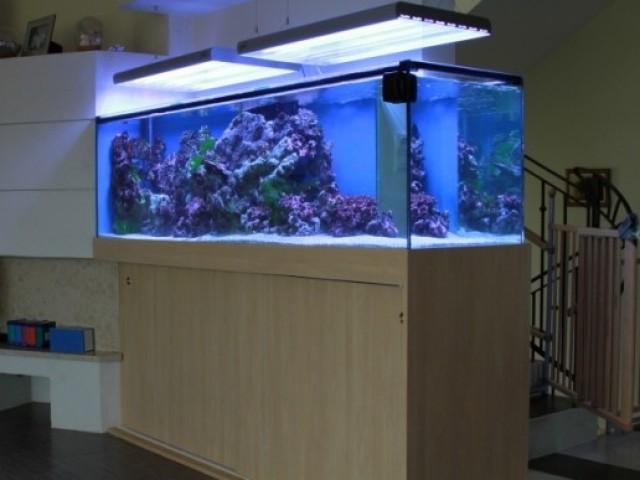 700 literes tengeri akvárium