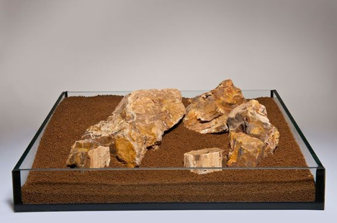 Fossilized Wood (megkövesedett fa) Akváriumi dekorációs kő
