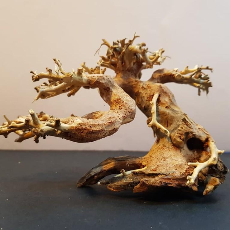 Bonsai Wood SSS  dekorációs fa